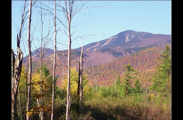 Whiteface Mountain in Autumn from the Refuge