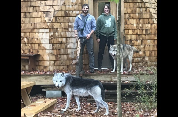 Alex and Hannah, two of our wolf handlers, with Kiska and Zeebie.